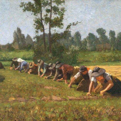 Eschke, Richard. Feldarbeiterinnen. Öl/Lw. 63 x 81 cm. Sign., dat. 1903.