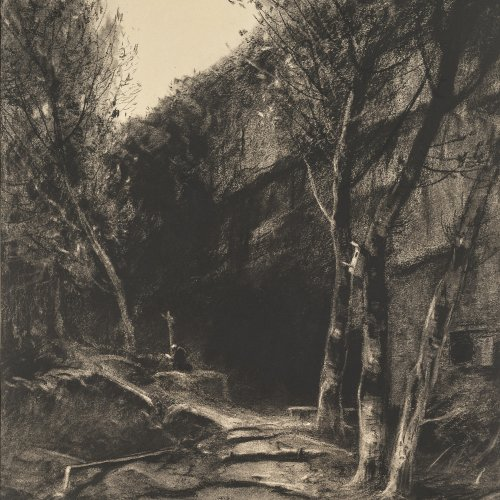 Willroider, Ludwig, Waldlandschaft, Kohlezeichnung