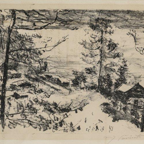 Corinth, Lovis, Seeufer mit Haus, Lithographie, 32 x 43 cm.