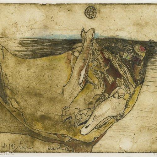 Janssen, Horst. Svanshall. Farbradierung. 18,5 x 24,5 cm. Monogr., dat. 76.