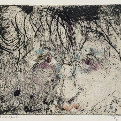 Janssen, Horst. Svanshall. Selbstporträt. Farbradierung. 18 x 22,5 cm. Monogr., dat. 76.
